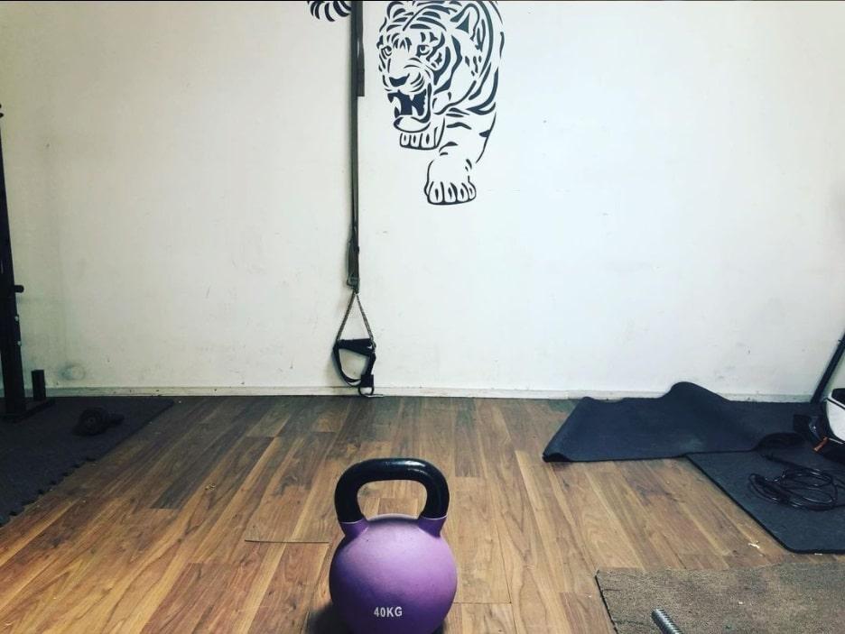 Tigers-Den01-min